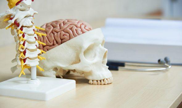 cirugia-cuello-y-cabeza
